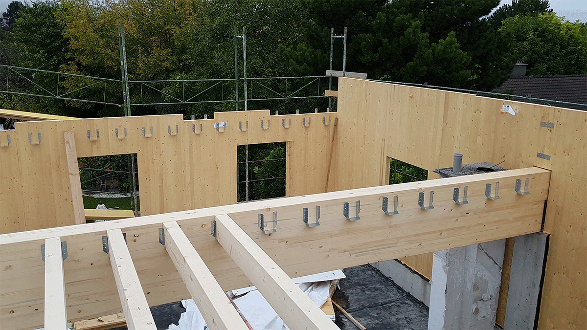 Errichtung der Holzwände